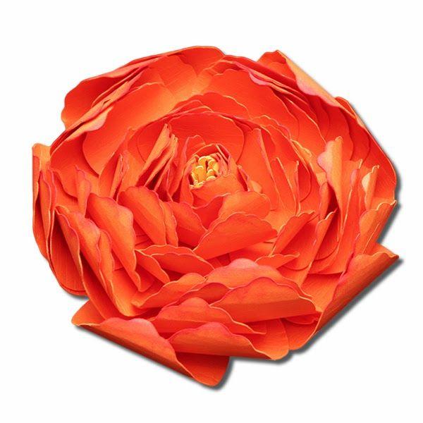 3D Peony, Ranunculus,