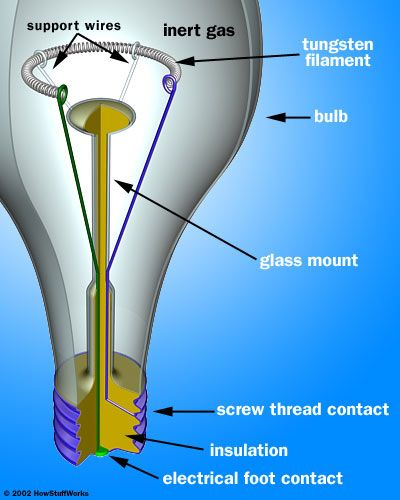 Lightbulbs -- the parts & how they work. This model will help students with the electricity unit!