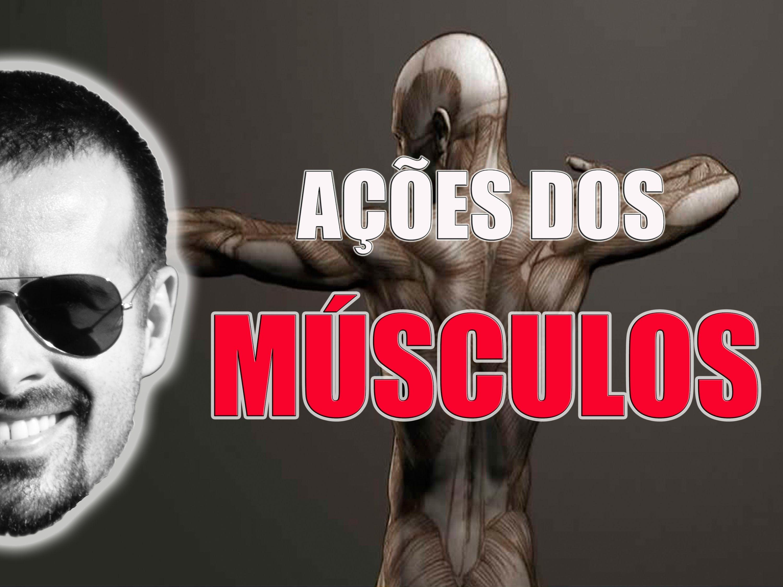 Sistema Muscular: Ação dos músculos (macete fácil de aprender ...