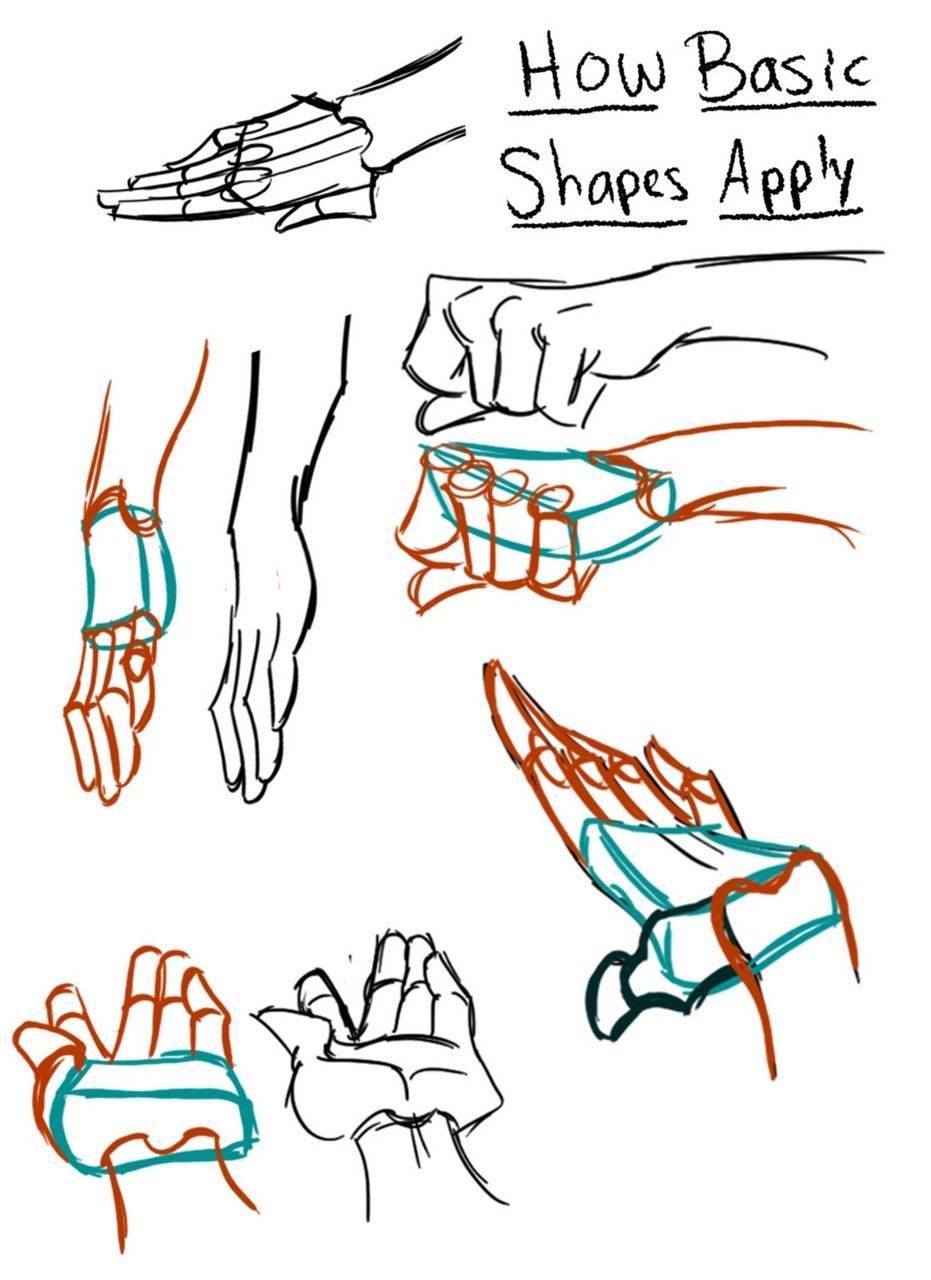Anatomy References — freyacake wannabeanimator Hand