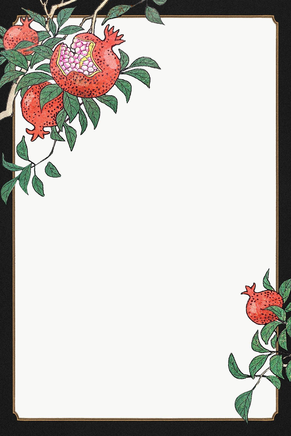Pomegranate border frame design element | free image by ...
