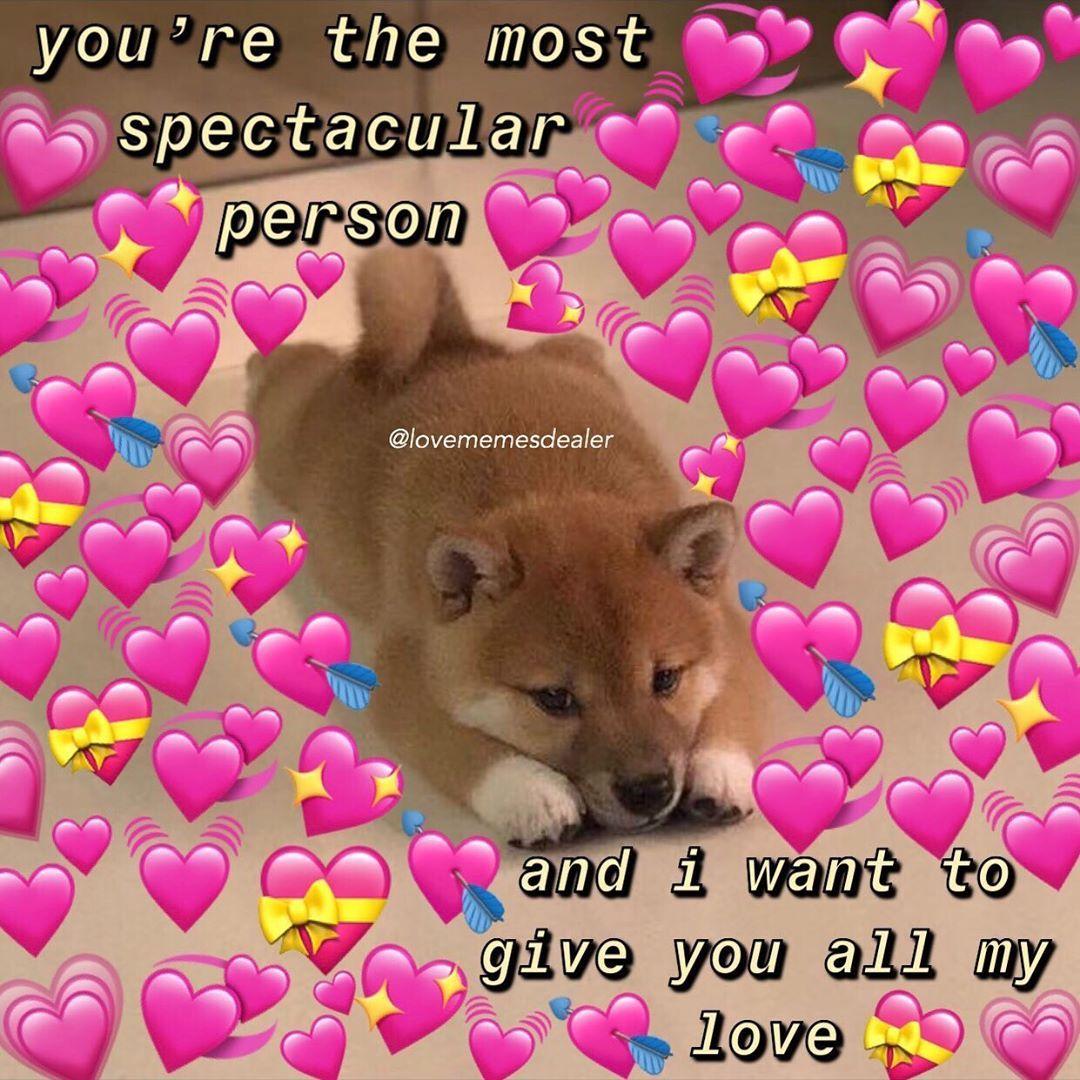 My Mom Made Spaghetti Yayyyyyy Follow Lovememesdealer For More Mood Cutememe Lovememes Wholesomemem Love Memes Love You Meme Cute Love Memes
