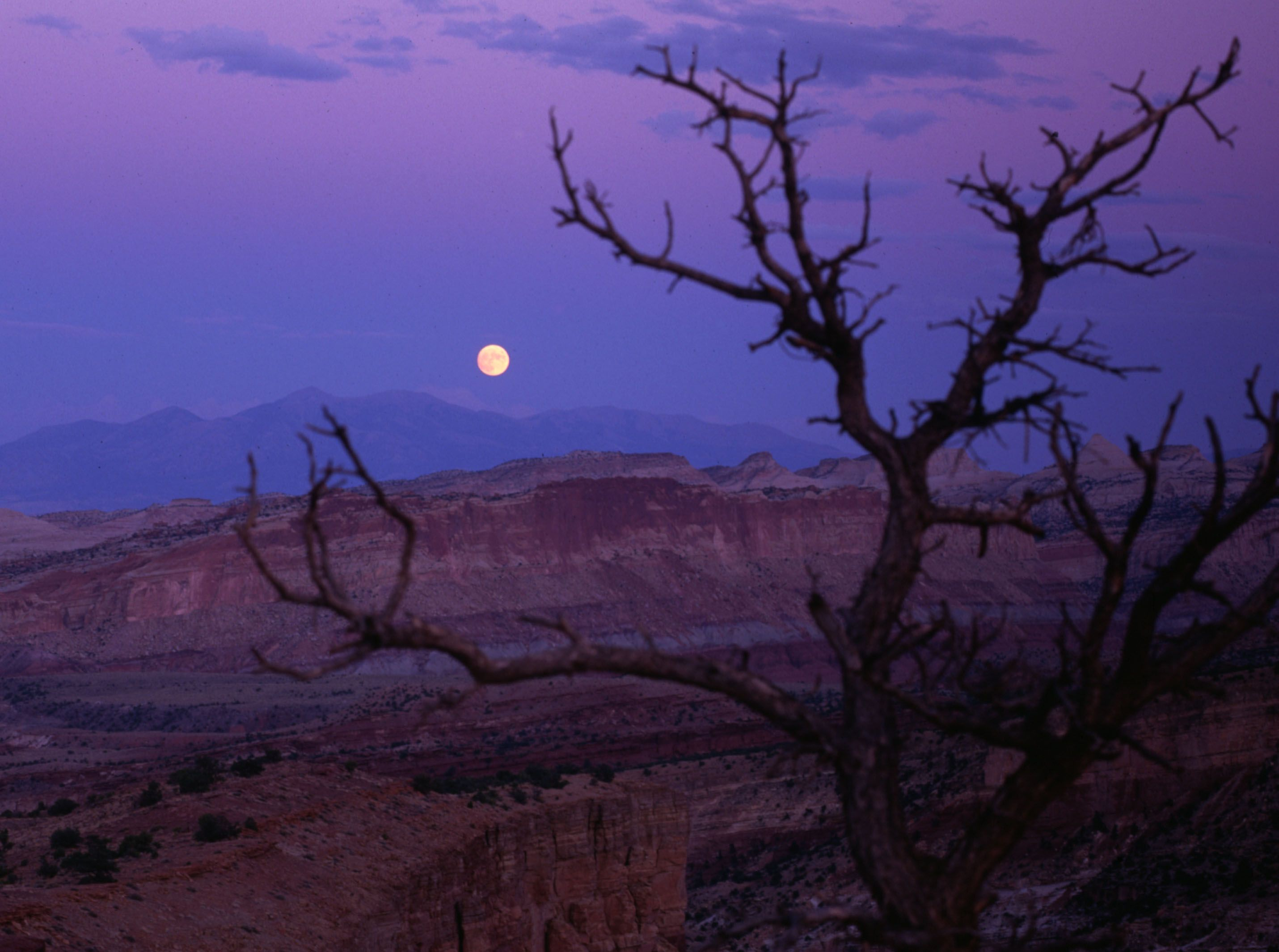 Full Moon Over Capital Reef