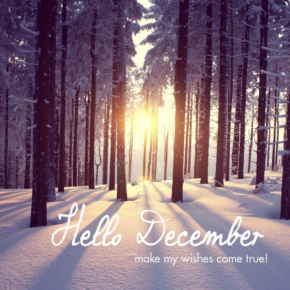 Hello December Make My Wishes Come True Justaway Travel Quotes