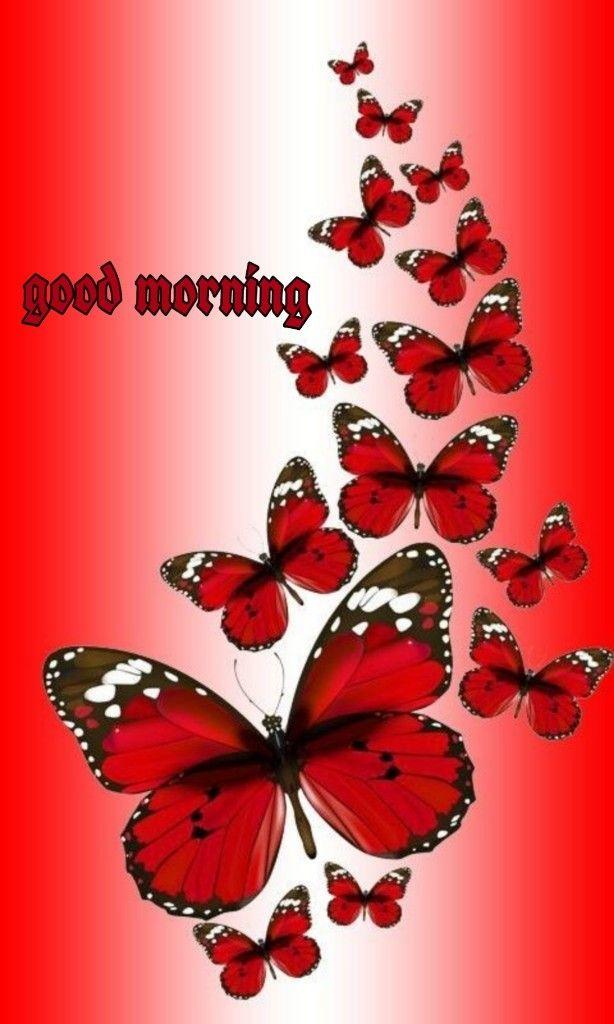 Pin By Carolina Gonzalez On Good Morning Images Butterfly Pictures Butterfly Painting Butterfly Wallpaper