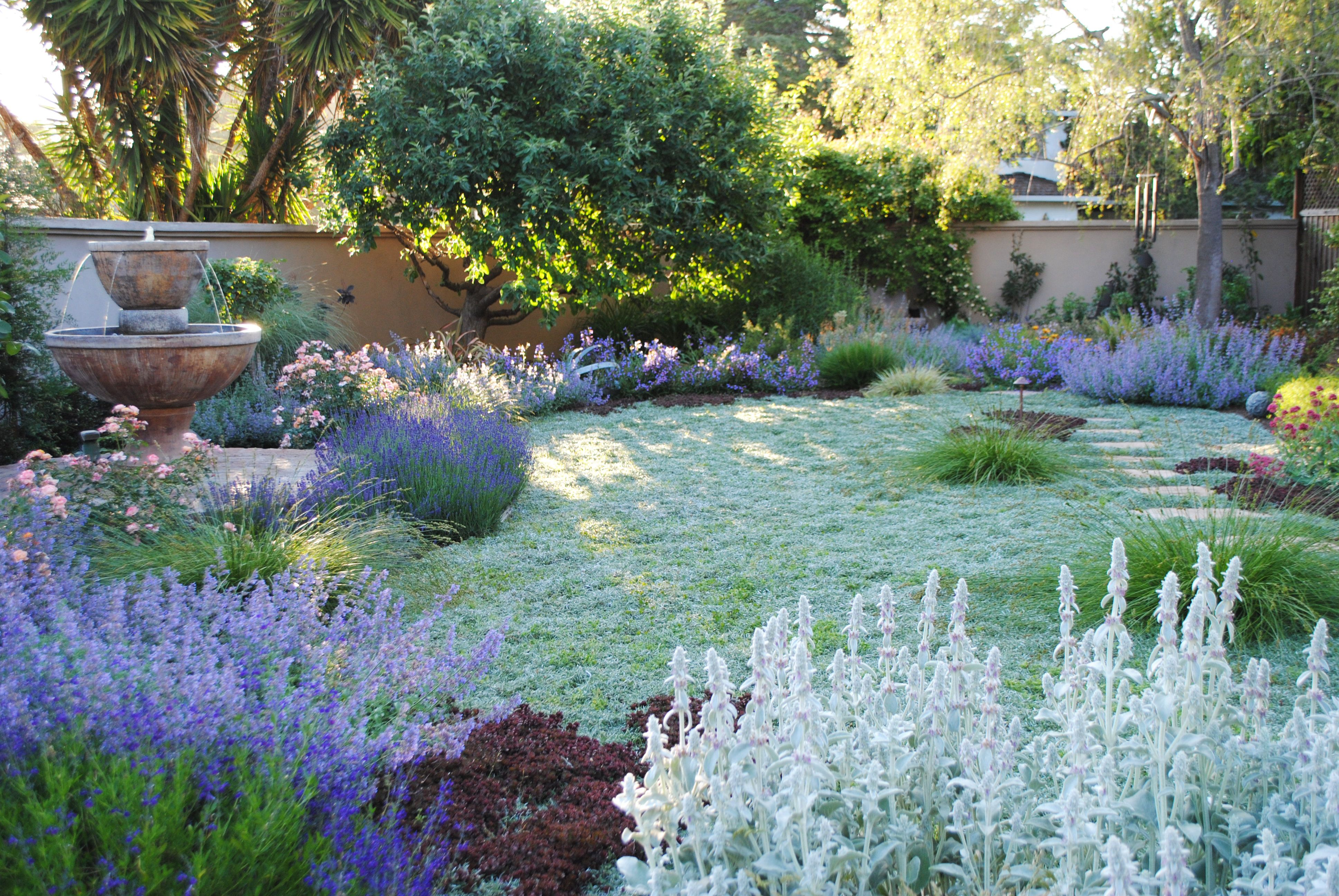 Drought Tolerant Landscaping Designs Google Search 400 x 300