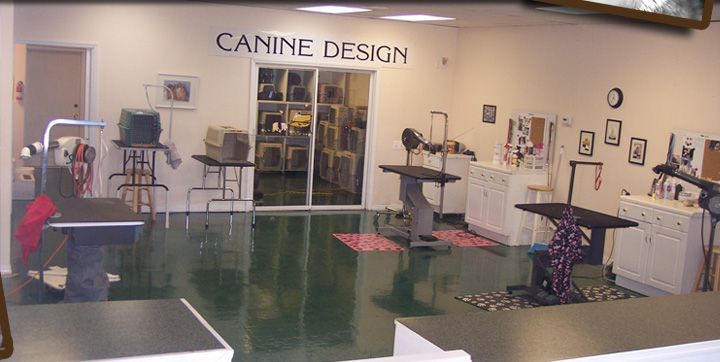 Canine Design Dog and Cat Grooming in Sebastian, Florida