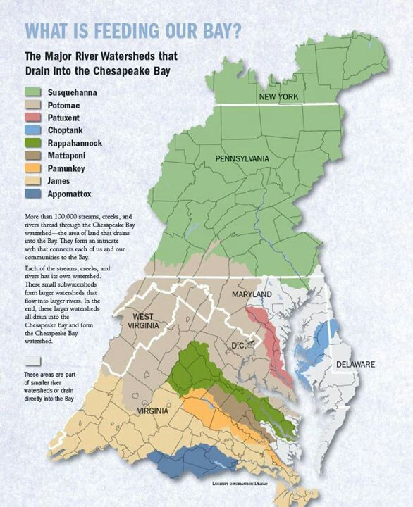Chesapeake Bay Watershed Map on
