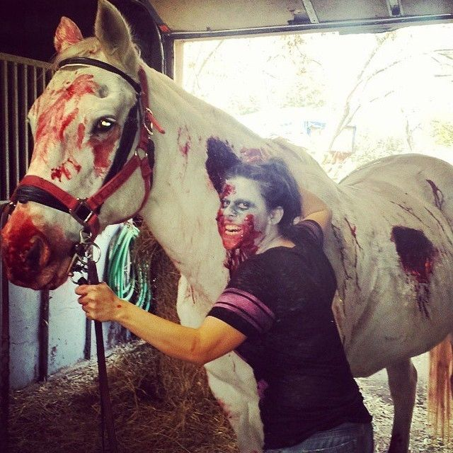 These Horse Halloween Costumes Will Make You Want A Trusty