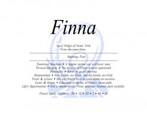 fina_001-300x231