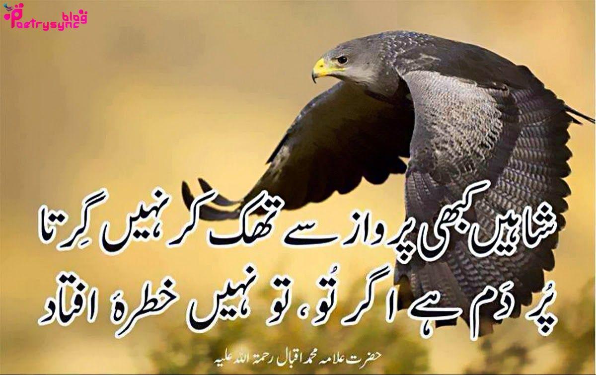 life inspirational quotes in urdu wallpaper Allama Iqbal Motivational Poetry Pictures in Urdu on Life ut image