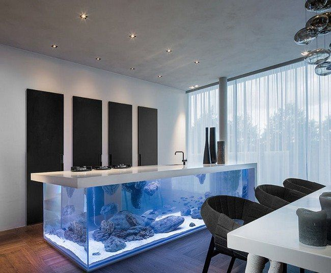 Transform the Way Your Home Looks Using a Fish Tank   Fish tanks ...
