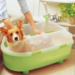 Iris Dog Bath Tub Medium On Sale Free Uk Delivery Dog Bath