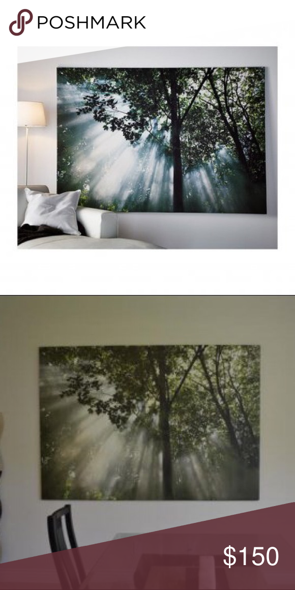 Ikea Tree Canvas Wall Art Huge Gorgeous Print Discontinued From Originally Paid