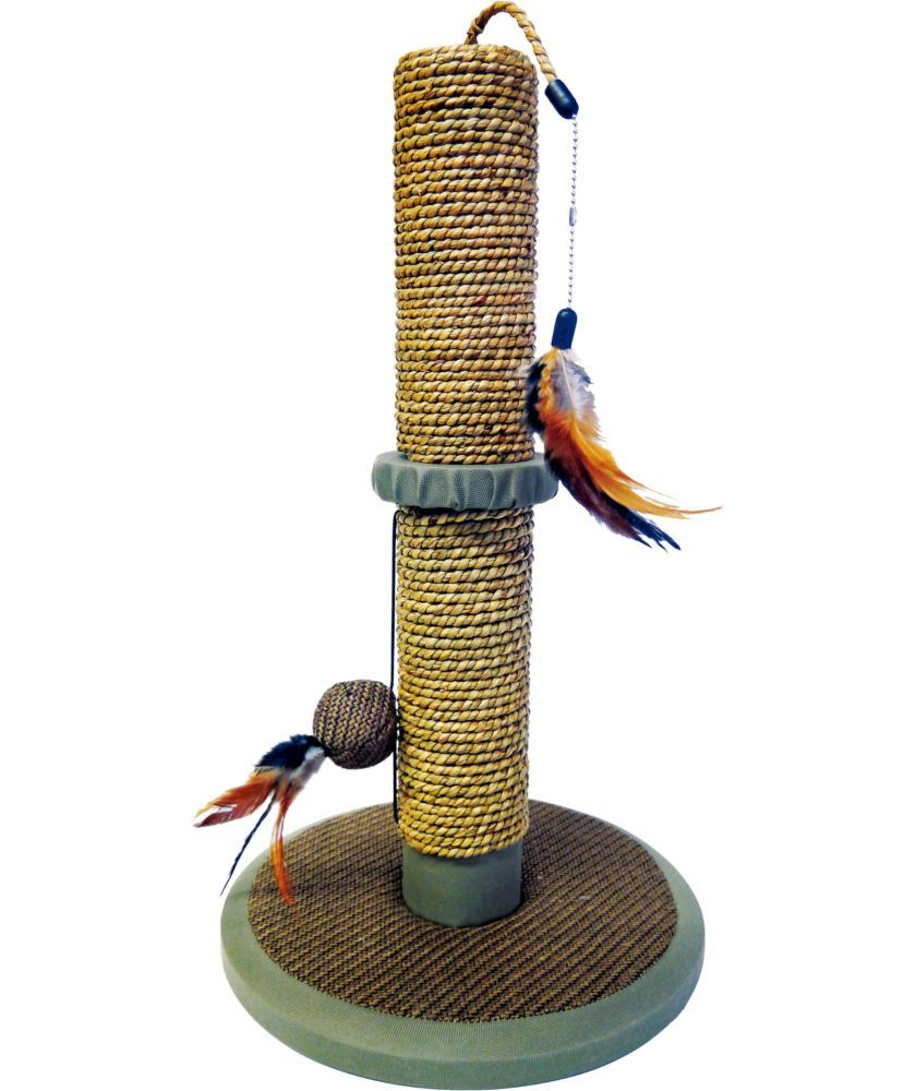 Buy Seagrass Kitten Scratch Post with Toys at Argos Your
