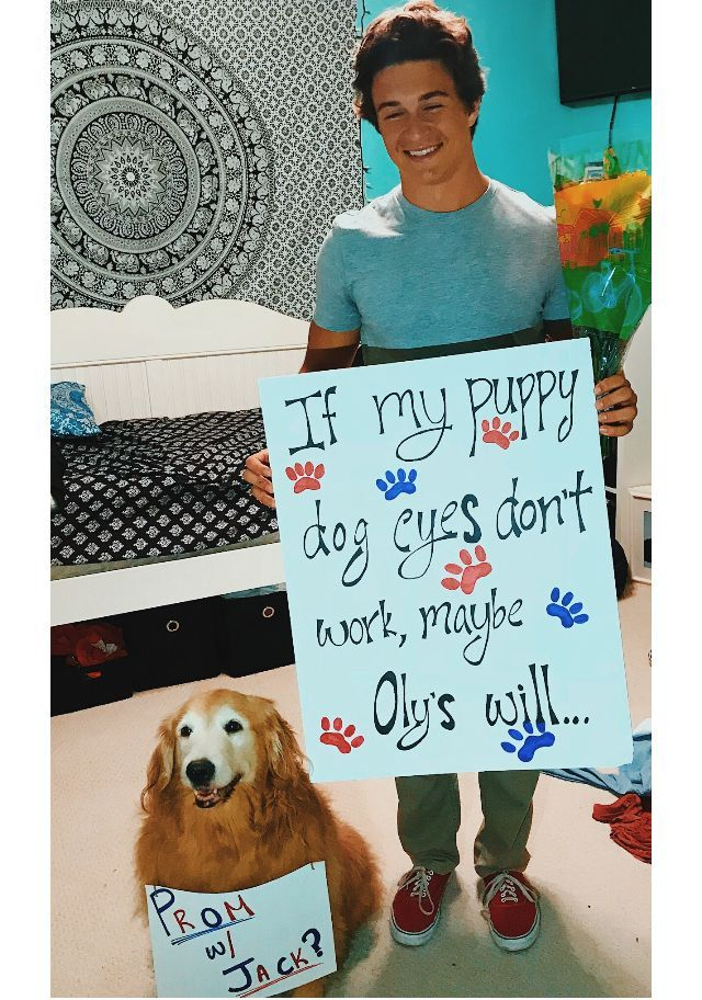 Only for the dog! Best homecoming proposal ever! #hoco #hocoproposals #hocoproposals