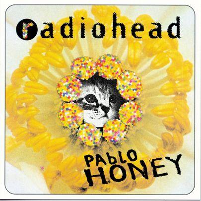 Pablo Kitten (Radiohead / Pablo Honey)