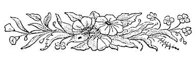 Black and white flower borders images flower decoration ideas black white flower border black and white floral border image with 2bd1842ae0db198f25f1d659f994d3cfg mightylinksfo images mightylinksfo Image collections