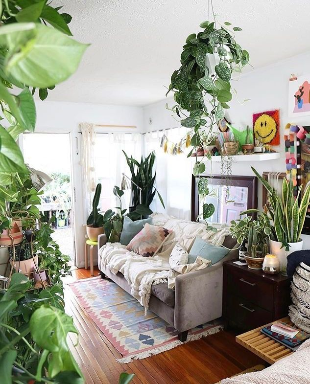 beautiful living room plants ideas for the decoration style also best diy home decor images on pinterest in indoor rh
