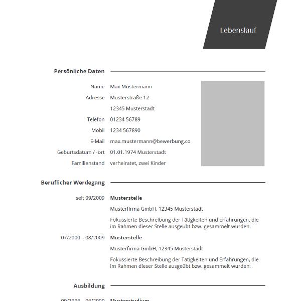 Vorlage / Muster: Lebenslauf professionell | Lebenslauf | Pinterest ...