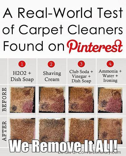 Pinterest carpet results1 solutioingenieria Choice Image