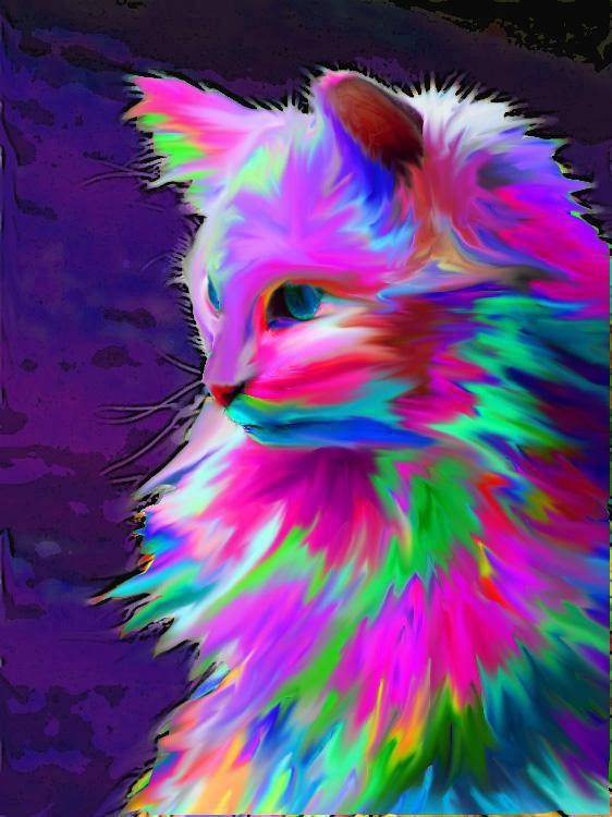 Neon Colorful Cat Art Graphic Design More