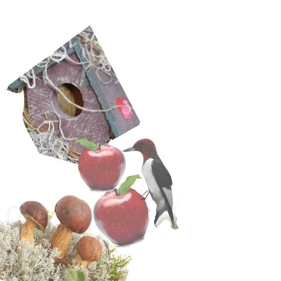 Bird House with apple on roof on twig with cones by rusticrevivals, $35.00