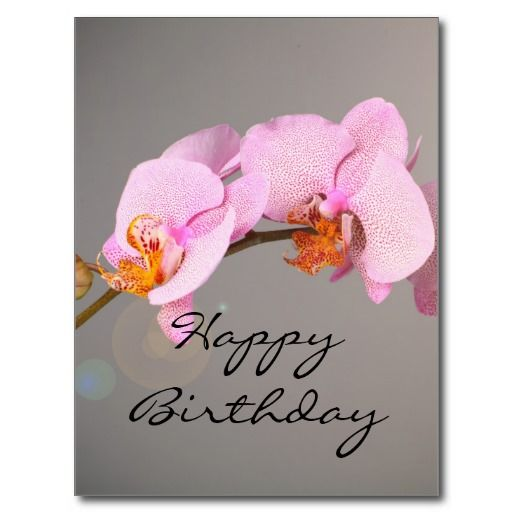 Pink Orchids Happy Birthday Post Cards Flowers Pinterest Pink