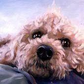 custom Pet Portrait paintings in Oils by puciCanine Cuties custom Pet Portrait paintings in Oils by puciCuties custom Pet Portrait paintings in Oils by puciCanine Cuties...