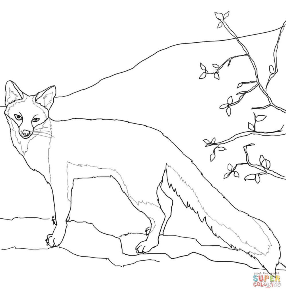 Fox Coloring Pages Fox Coloring Page Easy Coloring Pages