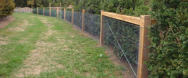 Fencing posts - mesh fence|welded wire mesh|wire mesh fence|wire ...