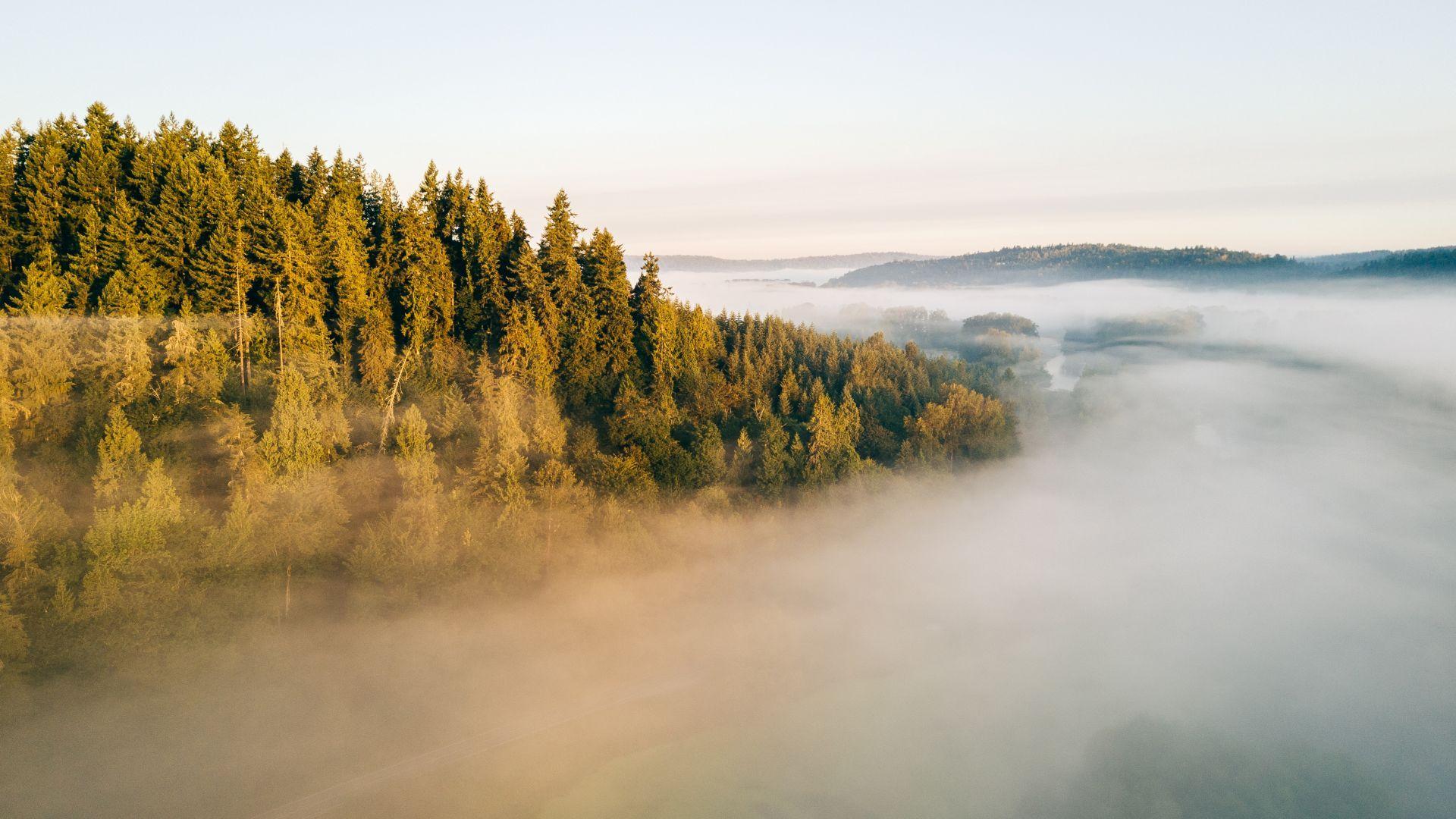 Fog Landscape 4k Horizontal พ นหล ง ธรรมชาต วอลเปเปอร
