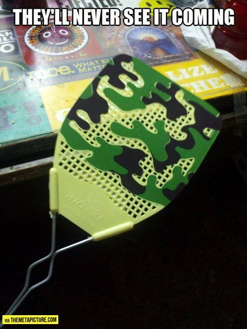 Camouflaged Flyswatter With Images Funny Pictures Funny