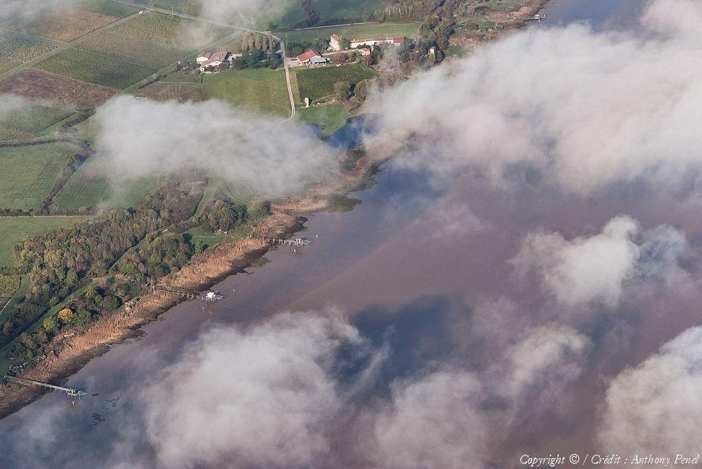 Photo Aerienne De Estuaire De La Gironde Gironde 33 Photo Aerienne Aerien Et Gironde
