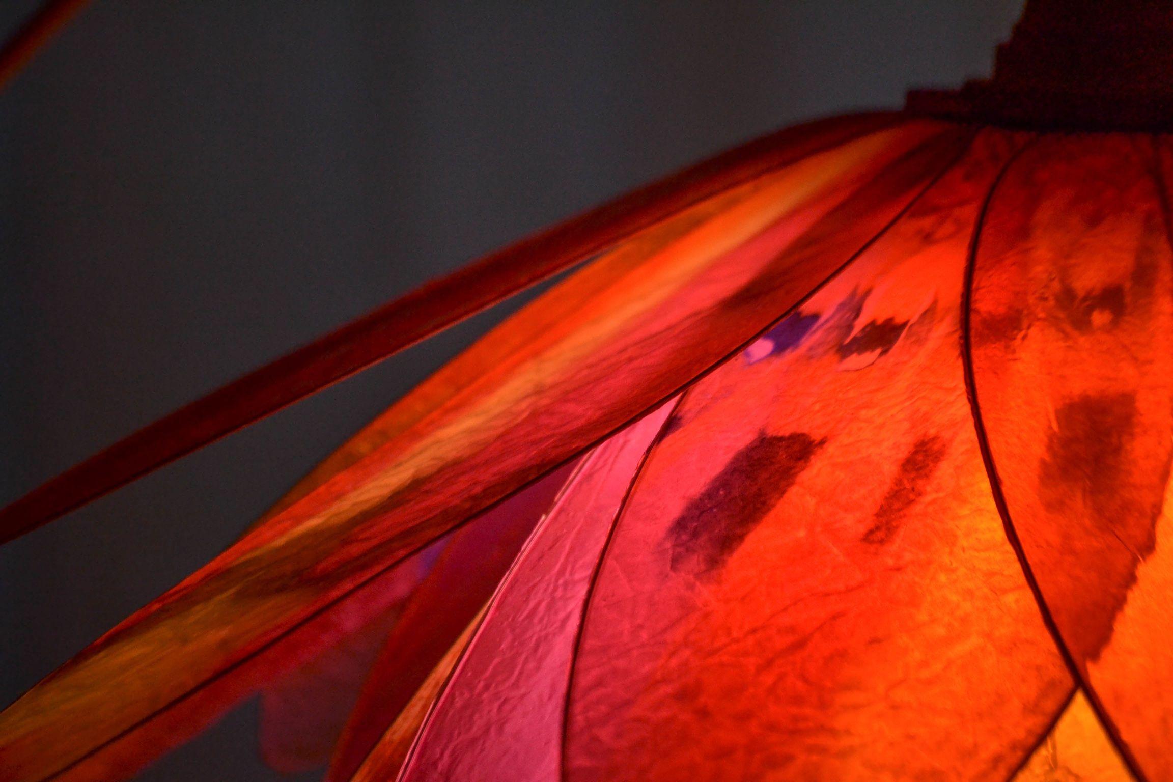 Lampadario rosso piccante. Fiori rossi, Lampadari, Fiori