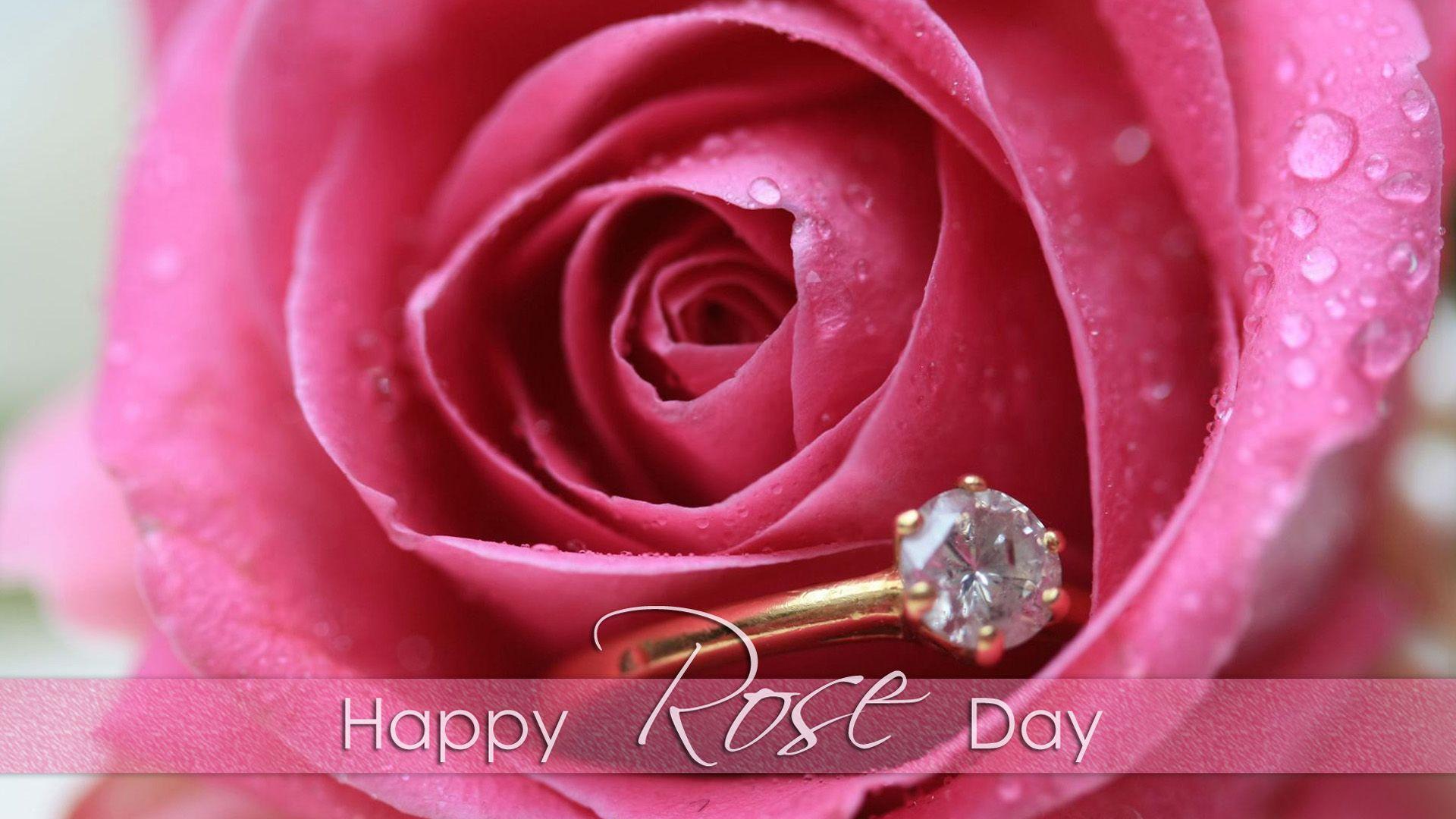 The Rose of Love roses Wallpaper Les jolie rose Pinterest