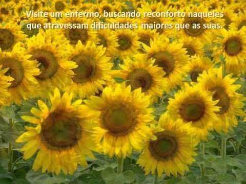 Texto antidepressivo Chico Xavier e Andre Luiz - YouTube