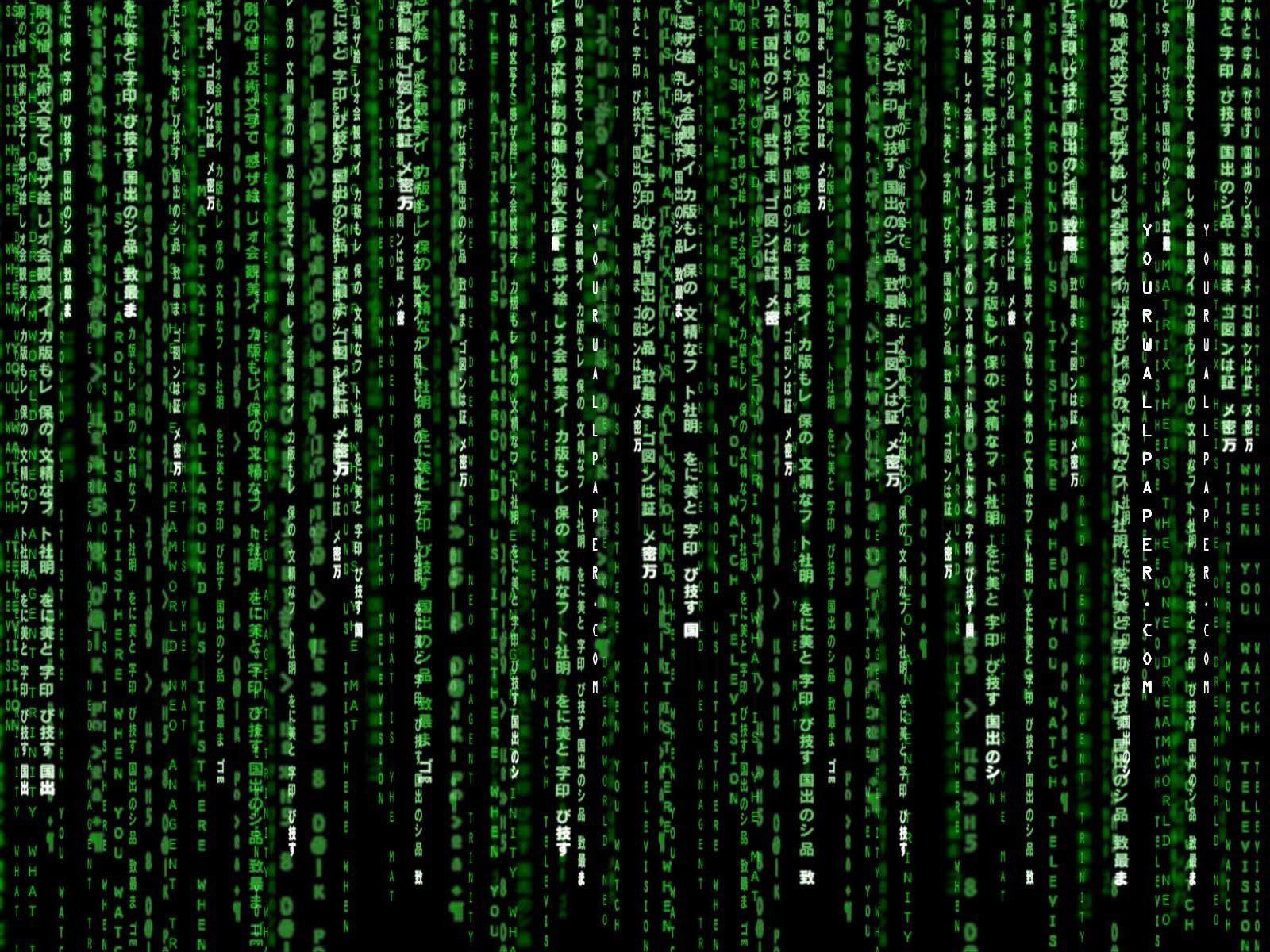 Matrix Movie Wallpapers Wallpaper Hd Wallpapers Pinterest