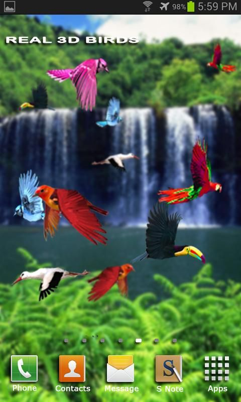 Download Flying Birds Live Wallpaper For Android