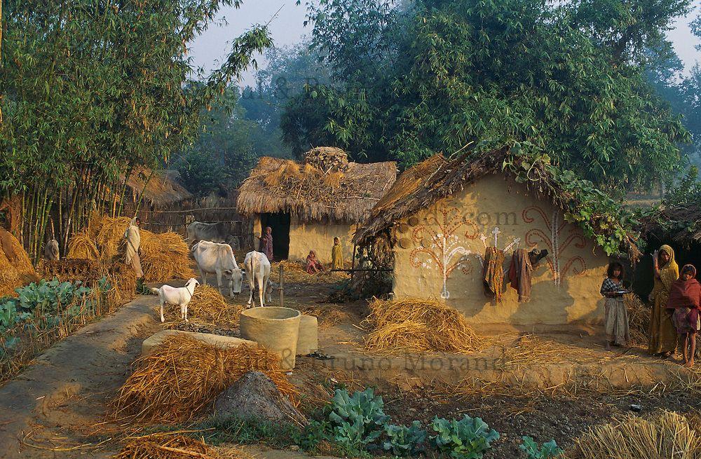 Nepal Terai Village Mithali Nepal Terai Mithali Village Village Photography Watercolor Landscape Paintings Landscape