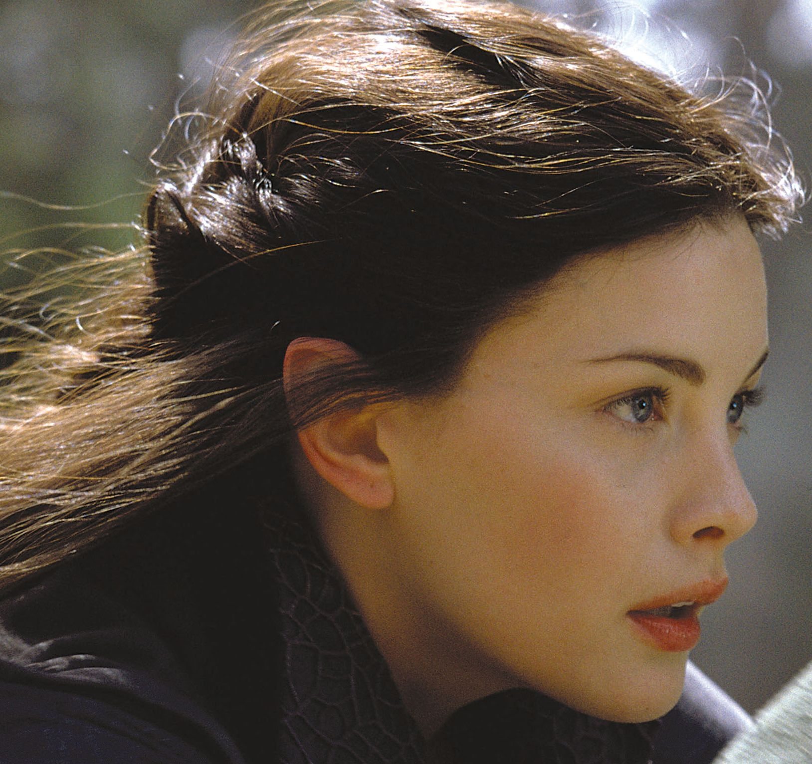As Seluna Someone Like Liv Tyler Fellowship Of The Ring Liv Tyler Lord Of The Rings