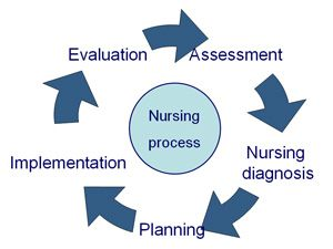 the nursing process steps skills and 418 provide examples of how the performance appraisal  appraisal process the mgh department of nursing  and skills of nurses as well as.