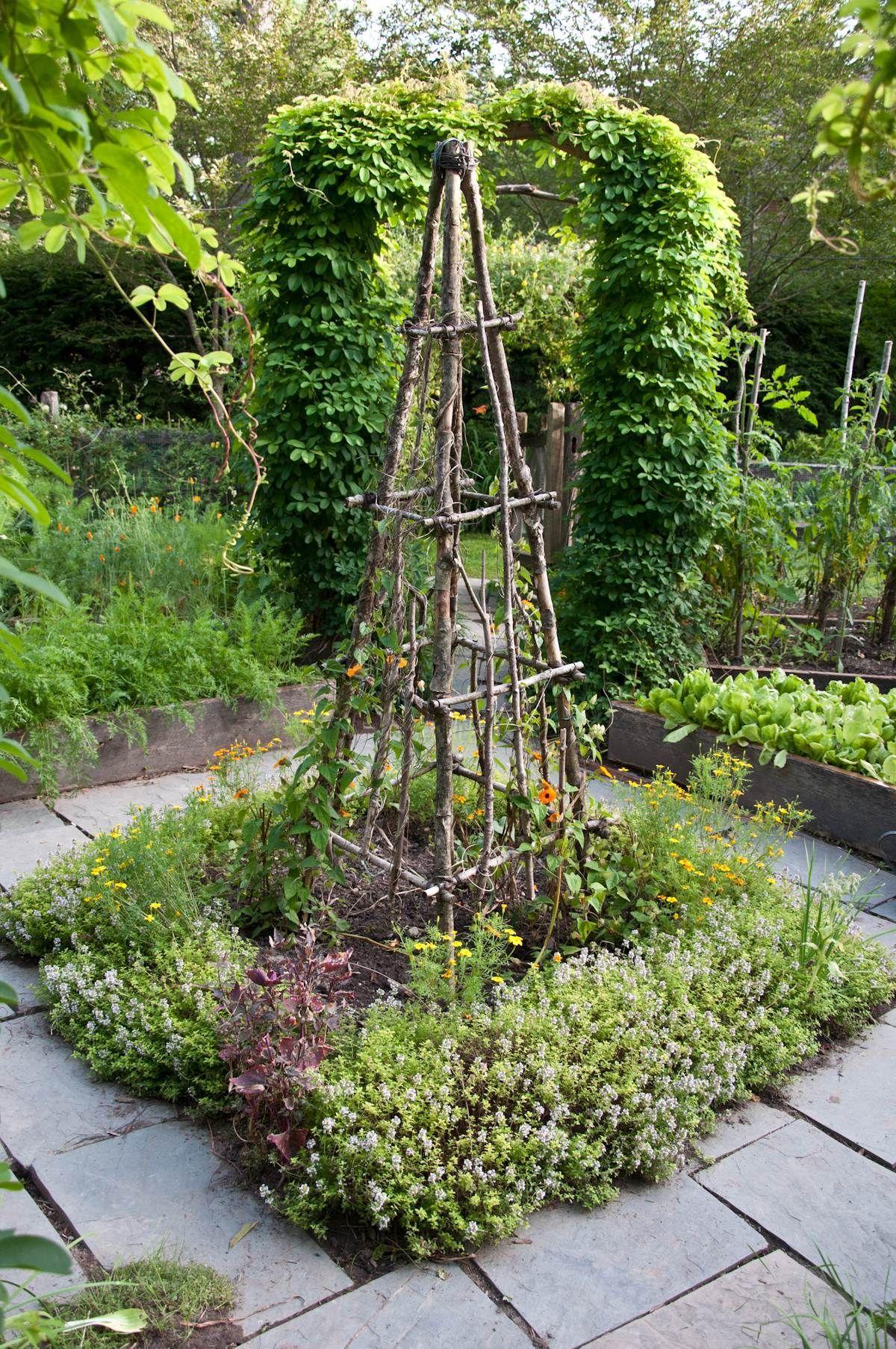 Garden decor trellis  Rustic Tuteur Trellis with herbs in the center of a Potager