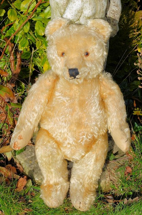 """'Florence' adorable old 1950's Steiff bear 20"""" for sale on"""