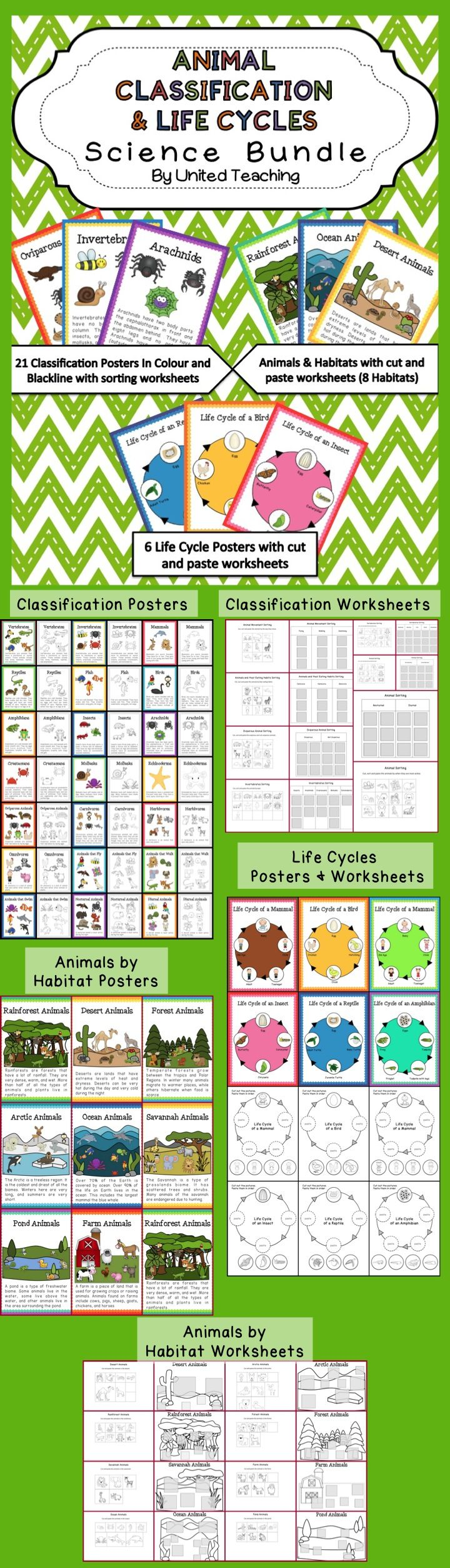 Animal Classification & Life Cycles Science Bundle >> This Bundle includes Animal Classification Posters & Coloring Worksheets, Animal Sorting Worksheets, Animal Life Cycle Posters & Worksheets, Animals by Habitats Posters & Worksheets.