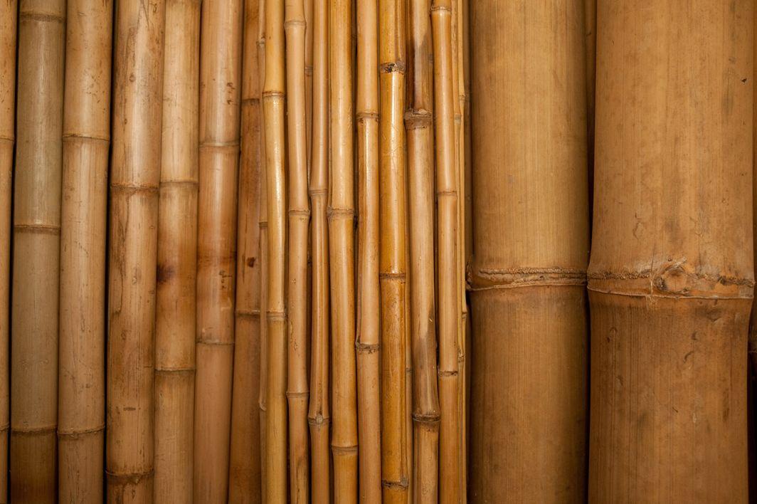 Blog de decoraci n bambu ekologinen rakennusmateriaali for Bamboo roofing materials