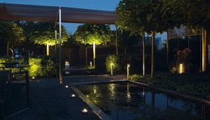 Tip From The Pro S Illuminate Focal Points Outdoor Lighting