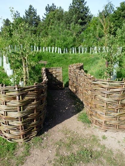 The homestead survival pine wattle fencing do it yourself project the homestead survival pine wattle fencing do it yourself project http solutioingenieria Choice Image