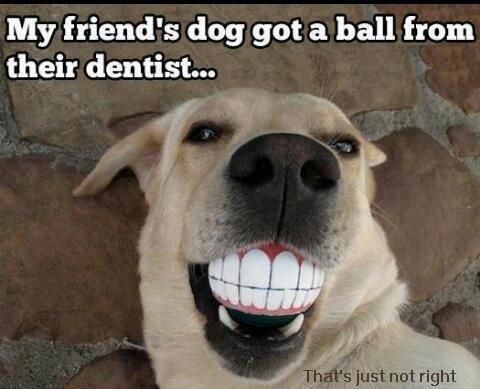Hahahaha! Don't forget to smile! :D