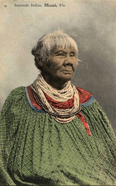Seminole Indian Florida Native American Peoples North American Indians Native American Heritage